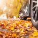 Take A Road Trip To See Fall Colors Around New Jersey